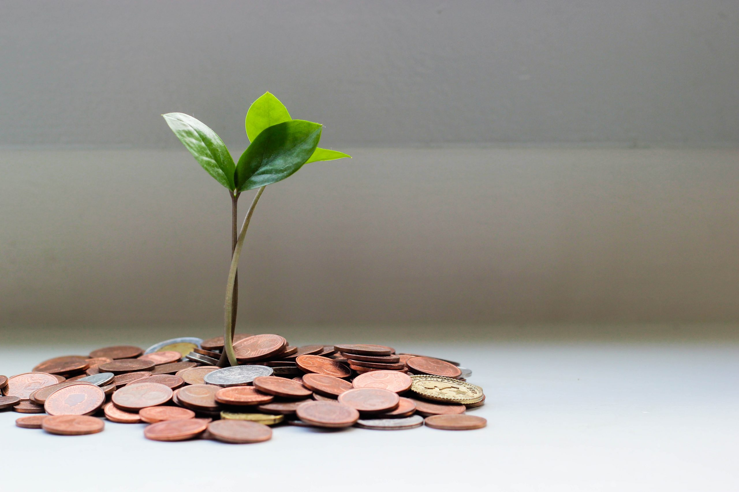 Growth Fund